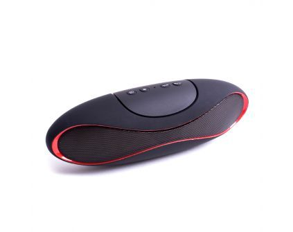 ROBIN Bluetoothi toega kõlar