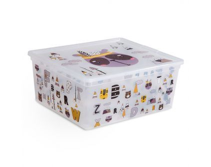 C-BOX kast